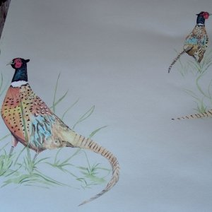 Pheasant Wallcovering Fawn